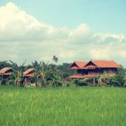 Bali Silent Retreat pradnya