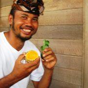 Sangtu with tumeric herbs