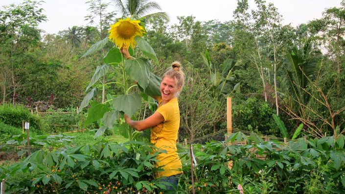 Brittany and our first Sunflower