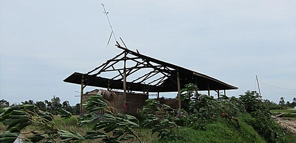 35-40kph winds – Blowing the roof off the gudang! Tin flying everywhere – OMG!