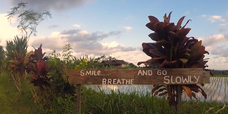 The Sounds of Silence: 7 Days at Bali Silent Retreat