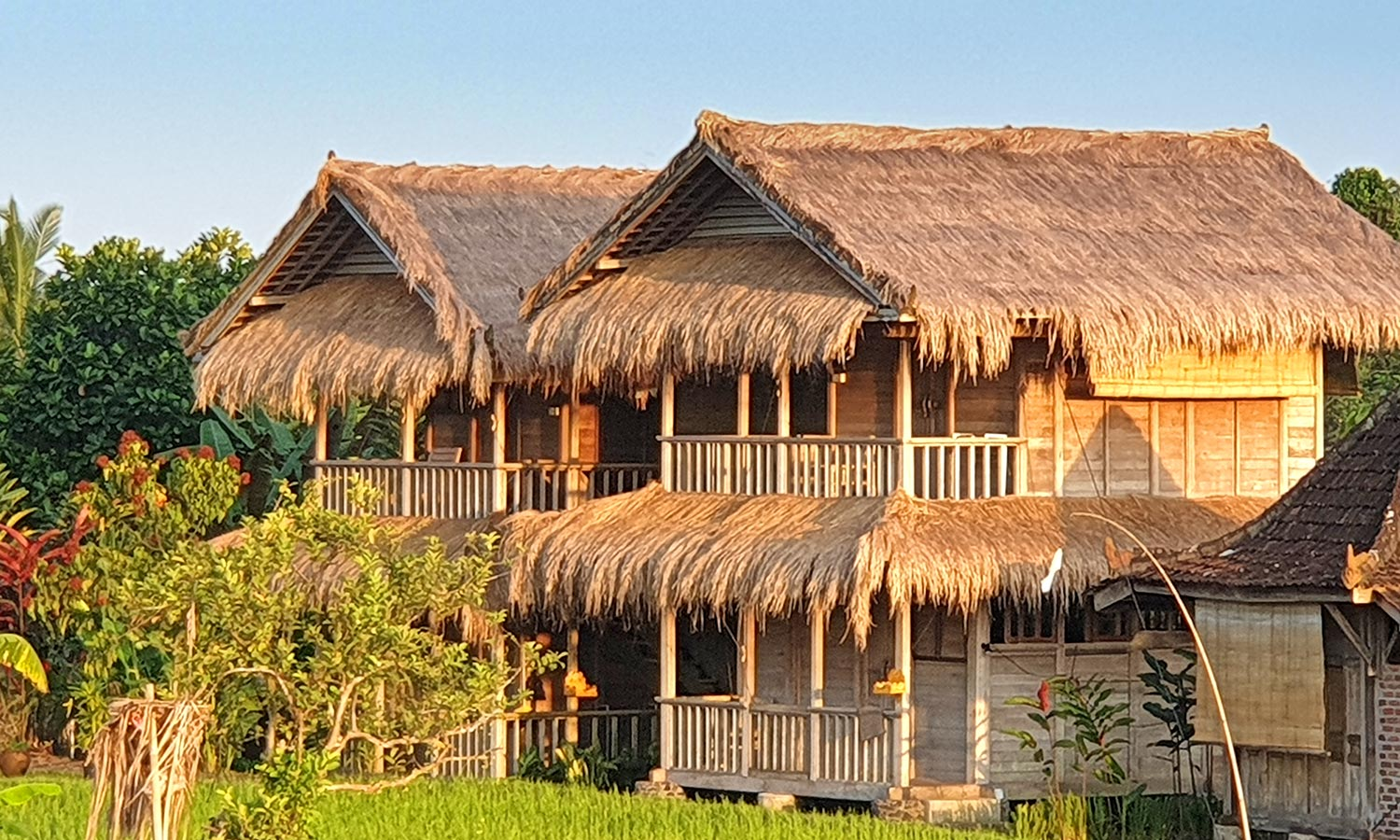 Deluxe Bungalows